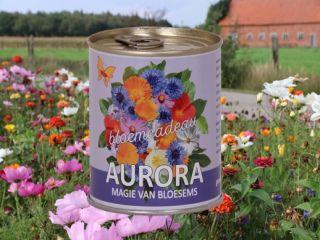 Aurora bloemcadeau